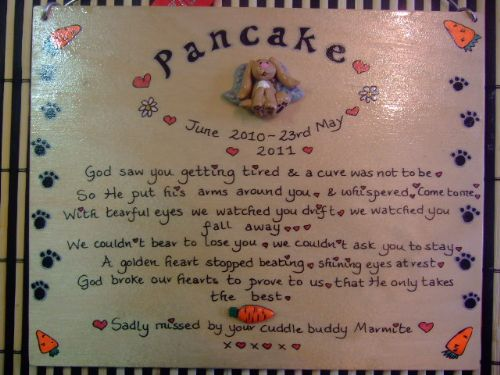 "Angel Bunny Rabbit Memorial Wooden Sign Handmade Unique Item Personalised Plaque ""God Saw You Getting Tired"""